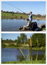 Anglesey Fisheries