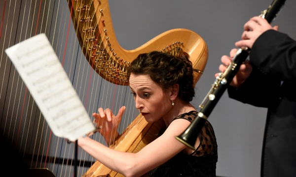 Rural Chamber Music Alliance Wales